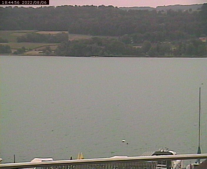 Webcam Hallwilersee Ost
